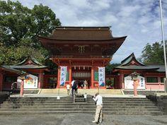 詳しくは http://shizuokafujien.com/71497/?p=5&fwType=pin