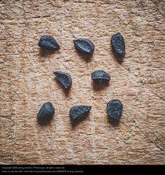 Foto '3-2-3' von 'johny schorle' #food #foodphotography #photography #stock  #paleo #vegan #vegetarian #macrophotography #spices #seasonings #black cumin