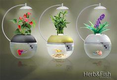 ハーブ & フィッシュ コネクト 〜世界一スマートなアクアリウム・ガーデン〜 植物と魚を同時に育てよう! スマートにデザインされた、小さなアクアリウム・ガーデン。テクノロジー