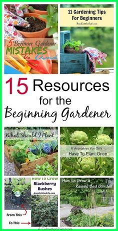 15 ressources pour le jardinier débutant