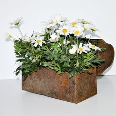 Love this idea for a flower pot -- Vintage Metal Lunchbox