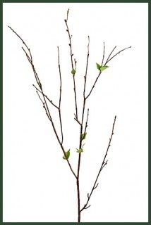 Artificial Magnolia Branches Mag001 Marks Pinterest