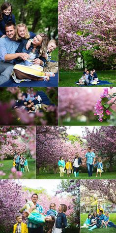 beautiful spring family portraits.