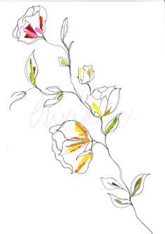 Floral line and collage drawing