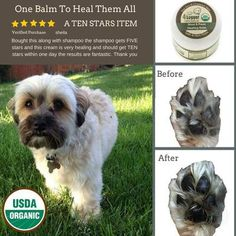 Our moisturizer works quickly and naturally to soothe dry and cracked nose and paw skin with our unscented organic hemp, shea butter, calendula and beeswax. Dog Paw Pads, Scar Reduction, Natural Vitamin E, Dog Nose, Natural Sunscreen, Natural Preservatives, Best Moisturizer, Healing Herbs, Hemp Oil