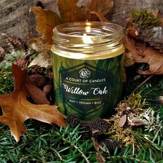 I can't get over how GORGEOUS these story candles are from A Court of Candles! <3 Willow Oak's candle is gold and green and scented with lavender, oak, sage, and willow. Earthy, sweet, yet subtle. I love it! #books #YA #YAbooks #bookcandles #candles #storycandles #charactercandles #characters