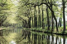MON   TOUR    DE   FRANCE ..........LE   CANAL   DU   MIDI....................