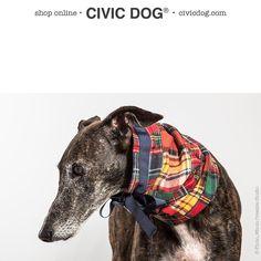 """O Clube da Tula en Instagram: """"El otoño de Tula ha comenzado. El acto de inauguración? Usar su gola #civicdog by O Clube da Tula. Shop online at civicdog.com. #patchwork #patchworkshow #galgos #galgos #greyhound #greyhounds #pitbull #dog #dogstagram #fashion #fashionblogger #fashionista #fashionistas"""""""