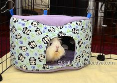 This guinea pig hideout would be cute for rats too!