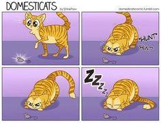 DomestiCats Comics – 11 Pics