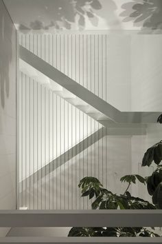 Galerie des Hauses am Meer / Pitsou Kedem Architects - 21 - Galerie – Haus am Meer / Pitsou Kedem Architects – 21 - Staircase Handrail, Stair Railing, Staircase Design, Railing Design, Interior Stairs, Interior And Exterior, Stair Elevator, Pitsou Kedem, House By The Sea