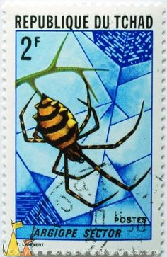 Black and Yellow Spider. Chad  http://stamps.livingat.org/Search.aspx?nav=Search=country=/Chad_ctl00$ContentPlaceHolder1$GridControlContent=1=Africa%2fChad%2fDSC_7499.jpg