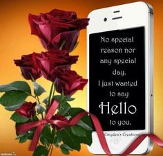 Hello Hello Goodbye, Say Hello, Special Day, Sayings, Lyrics, Quotations, Idioms, Quote, Proverbs