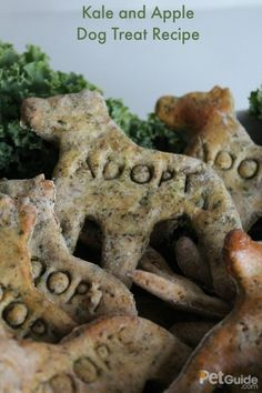 Kale is a great boost of beta carotene, vitamin K, and vitamin C, and it's the main ingredient in our Kale and Apple Dog Treat Recipe.