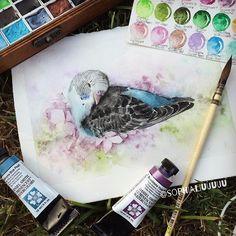 When a bird is sleeping Daniel Smith watercolor paints by sophialiuuuuu