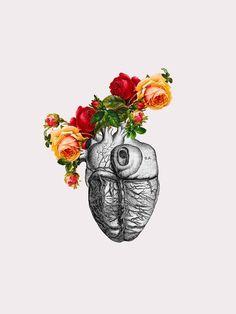 My Heart is Your Grenade