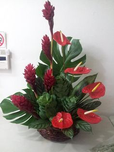 Tropical Flowers to Puerto Rico with Mia Bella a local Puerto Rico Flower Shop and Gift Basket service. Send tropical flowers to Puerto Rico. Creative Flower Arrangements, Tropical Floral Arrangements, Funeral Flower Arrangements, Beautiful Flower Arrangements, Flower Centerpieces, Flower Decorations, Beautiful Flowers, Altar Flowers, Church Flowers