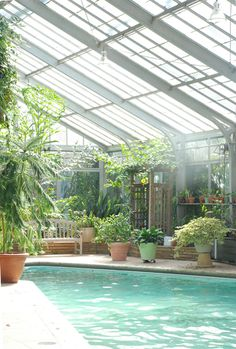 How cool is this pool greenhouse?!