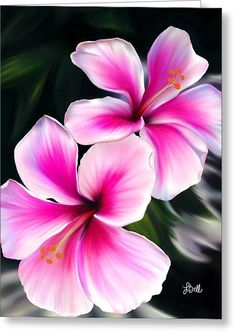 Hibiscuses iphone x case for sale by laura bell hibiscus flower drawing, hibiscus flower tattoos Hibiscus Flower Tattoos, Hibiscus Flowers, Tropical Flowers, Hibiscus Flower Drawing, Nail Art Fleur, Tattoo Fleur, Hawaiian Tattoo, Hawaiian Tribal, Language Of Flowers