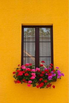 Austrian Window Design Ideas & Pictures Austrian Window - Home and Garden Design Idea's Aesthetic Iphone Wallpaper, Aesthetic Wallpapers, Pintura Exterior, Pot Jardin, Window Boxes, Window Design, Mellow Yellow, Flower Wallpaper, House Colors