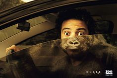 Walk-in zoo. Gorilla Show   Creative Ad Awards