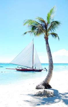 Oh the places I'd go with a sailboat