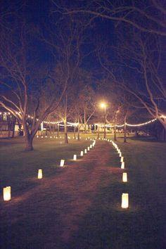 lanterns lining the walkway + hanging lights in the trees // wedding reception My Wedding Tree Wedding, Wedding Bells, Fall Wedding, Wedding Events, Wedding Reception, Rustic Wedding, Reception Entrance, Wedding Black, Gothic Wedding
