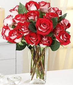 Discover the heartwarming dance of Red Velvet Roses. These one-of-a-kind roses in classic white and luscious red bring exquisite intrigue to any occasion. 18 Red Velvet Roses $49.99