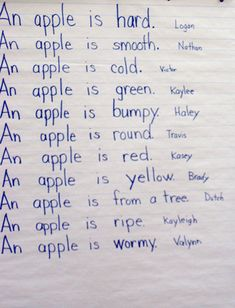 My Favourite Fruit Or Apple English Essay For Kids