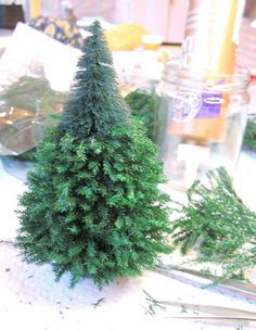 How to make amazing miniature trees.  This is how I made my mini Christmas tree over thirty years ago: http://www.flickr.com/photos/68499916@N00/8270613047/in/photostream/