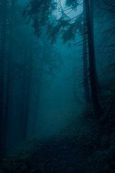 Raven S moody-nature: Landscape/Poland Night Aesthetic, Nature Aesthetic, Mystical Forest, Dark Paradise, Dark Photography, Wedding Photography, Dark Places, Fantasy Landscape, Dark Landscape