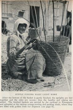 Cyprus 1928 basket weaving. a JPG   Flickr - Photo Sharing!