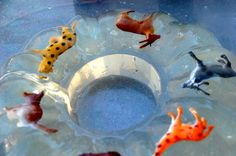 jell-o or ice excavation. tip: the less water you use, the faster the ice will melt, and the easier the excavation will be.