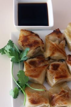 chicken-potsticker-recipe