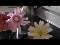 using steam to manipulate wafer paper flower petals. Cake decorating tips and tricks. Cake decorating tutorials.