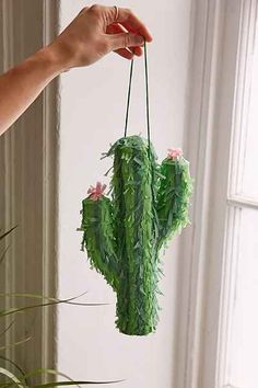 Something is. Cactus voyeur pic excellent idea