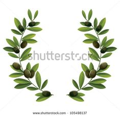 Image result for olive branch vector