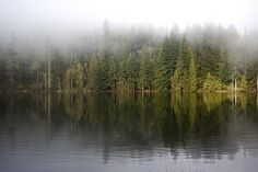 Mist_lake_foggy morning