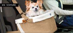 Siège auto canin pour voyager en voiture en toute sécurité. - Woof mag' - le magazine des chiens heureux