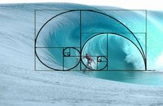Thinking about geometry all the time, you could harmonize your life with the structure of the universe. -Based on a quote by Einar Thorsteinn via Resonance Science Foundation #GoldenRatio #Fibonacci https://www.facebook.com/TheResonanceProject/photos/a.224460250920411.60587.216281778404925/1293458694020556/?type=3&theater