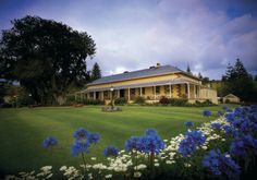 Government House, Norfolk Island - beautiful visit to this historical and magical home. Places To Travel, Places To See, Places Ive Been, Norfolk Pine, Wake Island, Islands In The Pacific, Norfolk Island, Marshall Islands, Great Barrier Reef
