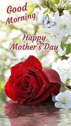 Short Mothers Day Poems, Happy Mothers Day Poem, Happy Mothers Day Pictures, Prayer For Mothers, Mother Day Message, Mother Day Wishes, Mother's Day Prayer, Mother's Day In Heaven, Good Night Blessings