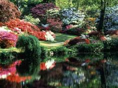 Exbury Gardens in the New Forest Hampshire