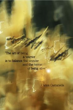 TOP LIVING quotes and sayings by famous authors like Carlos Castaneda : The art of being a warrior is to balance the wonder and the terror of being alive. Great Quotes, Quotes To Live By, Me Quotes, Inspirational Quotes, Path Quotes, Wisdom Quotes, The Words, Carlos Castaneda Quotes, Warrior Spirit