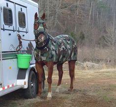camo leg wraps for horses