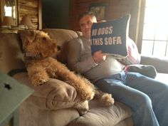 Airedales know the rules and the games... But, they are obstreporous enough to ignore them.