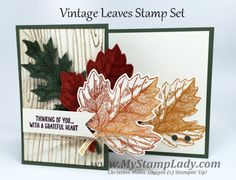 A fall card created with the Vintage Leaves on a  Handmade Z Fold Card base. www.mystamplady.com
