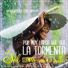 Los #problemas son pasajeros. Agárrate de DIOS y encuentra tu #descanso en Él. #tormenta #sol #confíaenDios #DiosEsAmor #DiosEsBueno #DiosEsFiel #Cristianos #Reflexiones #frases #motivación #Consejo #mensajespositivos #creatividad #AndandoEnAmor Linda tarde! Bendiciones
