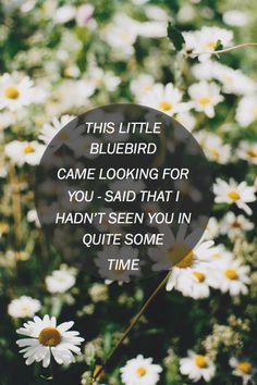 Bluebird - Christina Perri