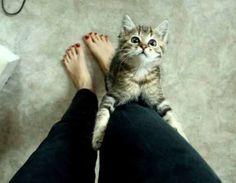 Please don't leave me!